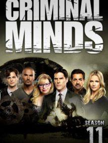 11 сезон сериала Мыслить как преступник