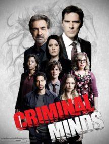 12 сезон сериала Мыслить как преступник