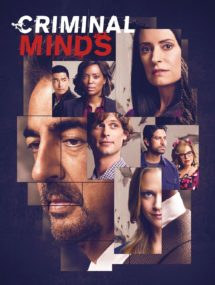 14 сезон сериала Мыслить как преступник