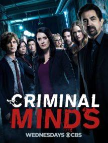 1 сезон сериала Мыслить как преступник