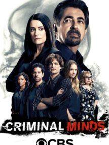 4 сезон сериала Мыслить как преступник