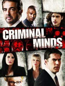 5 сезон сериала Мыслить как преступник