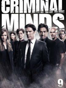 9 сезон сериала Мыслить как преступник